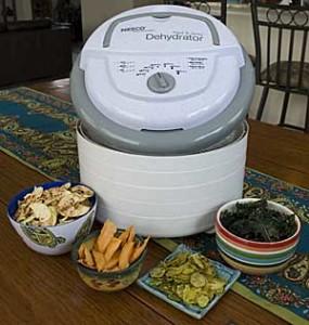 Nesco-FD-75A-600-Watt-Food-Dehydrator2-285x300